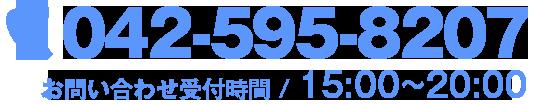 042-595-8207